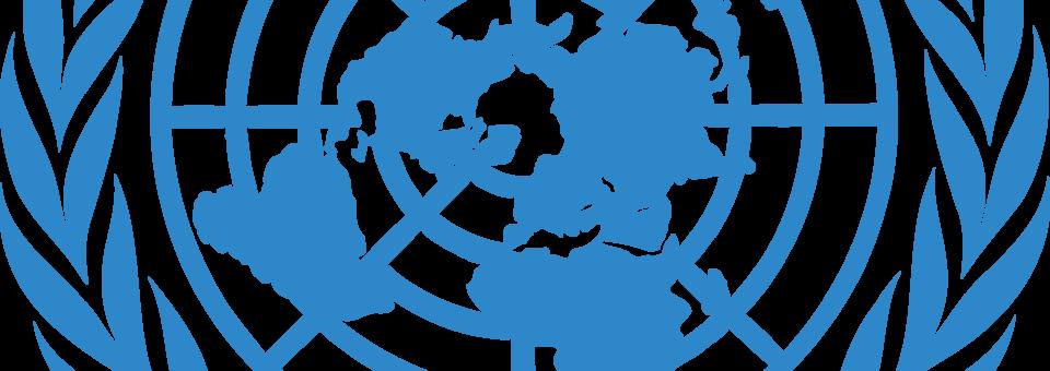 ÜRO konventsiooni täitmise variraport